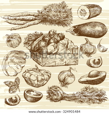 vegetables - hand drawn collection - stock vector