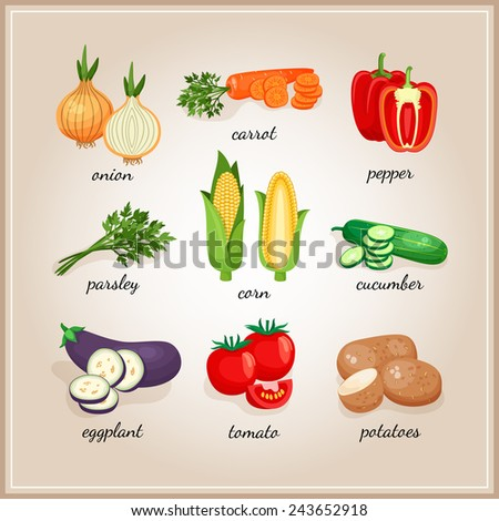 Vegetables ingredients. Collection of vegetables ingredients, each signed by the text. Vector illustration - stock vector