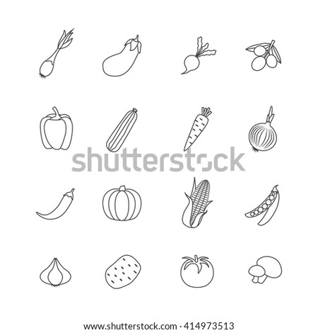 Vegetables isoalted flat icon set in line style with different types of fresh natural food vector illustration