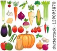 Vegetables. Large icon set of fresh vegetables. Each on own layer. Isolated - stock photo