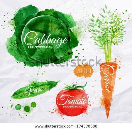 Vegetables set drawn watercolor blots and stains with a spray cabbage, carrot, tomato, peas - stock vector