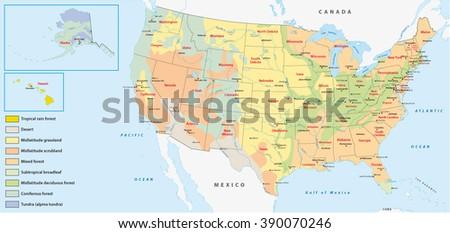 Vegetation Map United States America Stock Vector - Us vegetation map