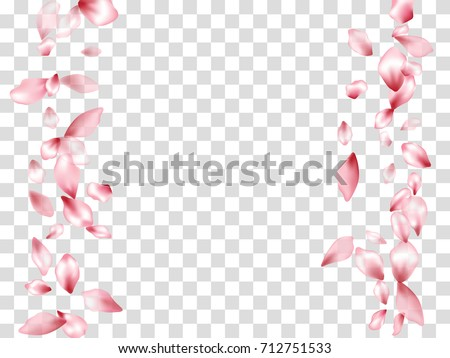 Vertical Borders Of Flying Petals Isolated On Transparent Grid Invitation Background Flower Parts Wedding Decorative