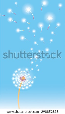 Vertical composition with dandelions in blossom