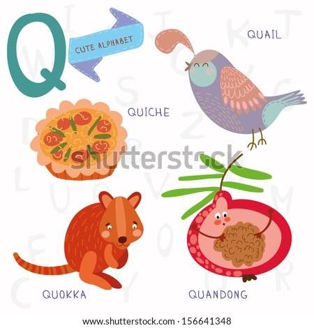 Very cute alphabet. Q letter. Quokka,quiche,quandong,quail. Alphabet design in a colorful style. - stock vector