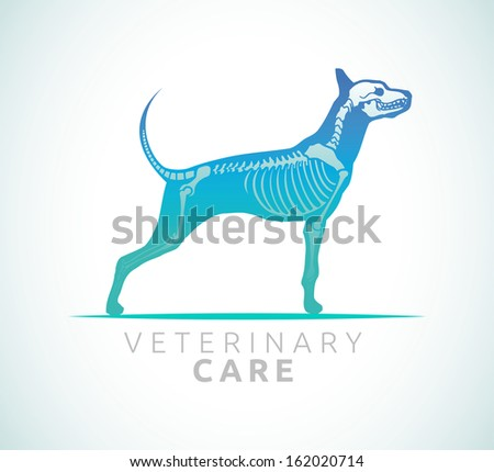 Veterinary care - dog care - stock vector