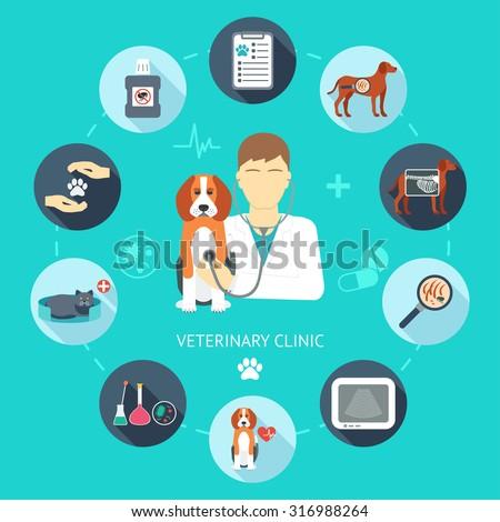 Veterinary flat icon set. Veterinary banner, background, poster, concept. Vet clinic. Flat design. Vector illustration - stock vector