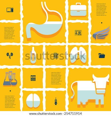 veterinary flat infographic