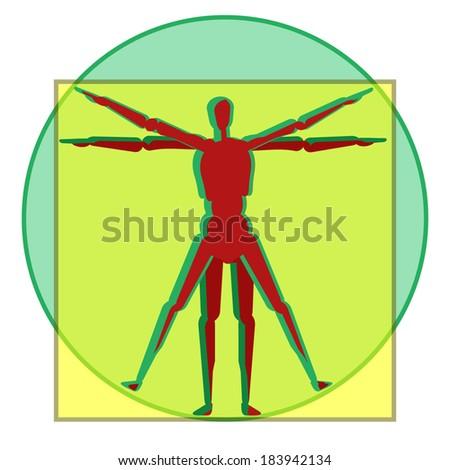 vetruvian human anatomy men study leonardo da Vinci - stock vector