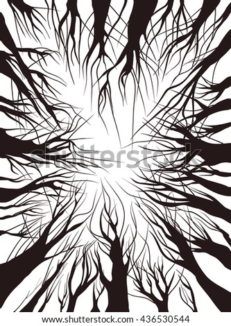 View up trees. black on white. vector illustration outline. Trees without leaves, isolated on white background. winter - stock vector