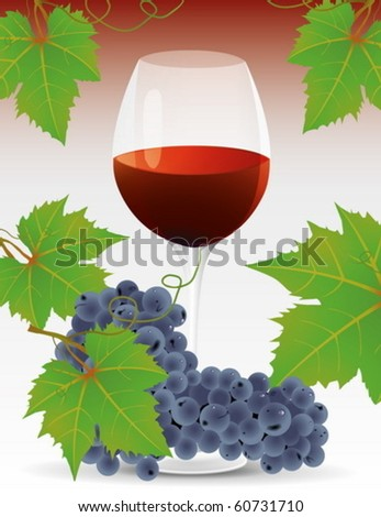 Vine and grape cluster with green leaves