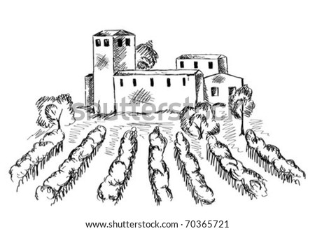 Vineyard and old building