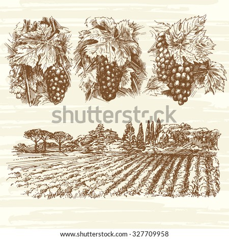 vineyard, farm, grapes - hand drawn collection - stock vector
