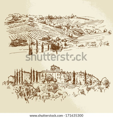 vineyard - hand drawn illustration - stock vector
