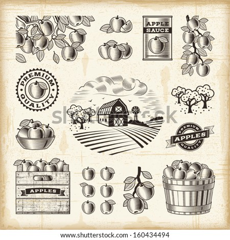 Vintage apple harvest set. EPS10 editable vector illustration with clipping mask. - stock vector