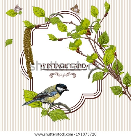 Vintage Card with Birch Twigs and Bird Tit   Vector Design element. Nature Background - stock vector