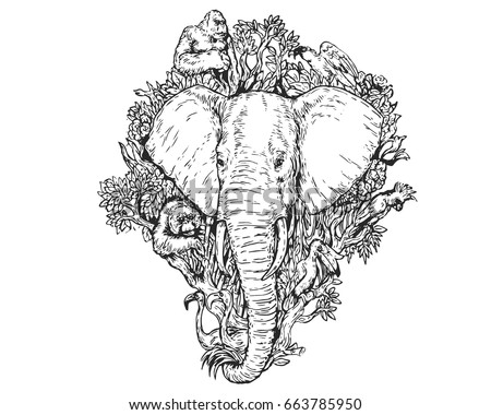 save forest save animals Every rainforest trust project is dedicated to saving real acres of rainforest to protect the wildlife and endangered  save acres saving the lost forest of.