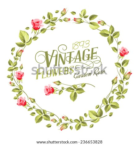 Vintage Flowers print over white texture. Vector illustration. - stock vector