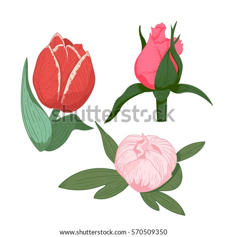 vintage flowers vector illustration stock photo photo vector rh shutterstock com vintage flowers vectors png vintage flower vector pattern