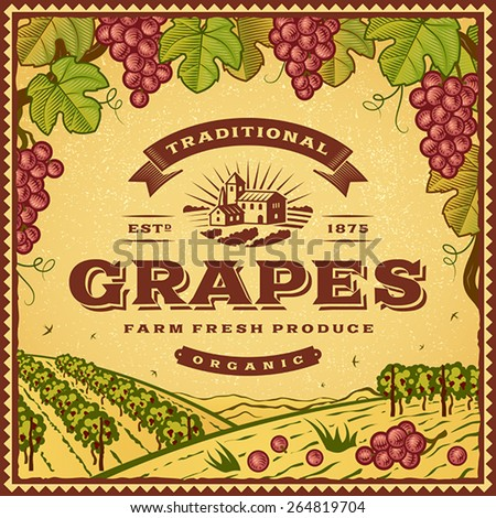 Vintage grapes label. Editable EPS10 vector illustration with clipping mask and transparency. - stock vector