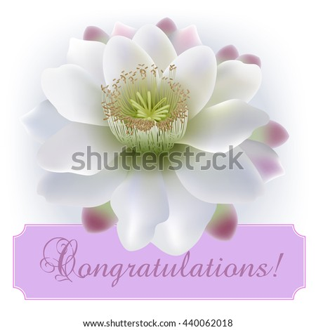 Vintage greeting card with blooming flowers, 'Congratulations' wording and place for your text. Vector illustration - stock vector