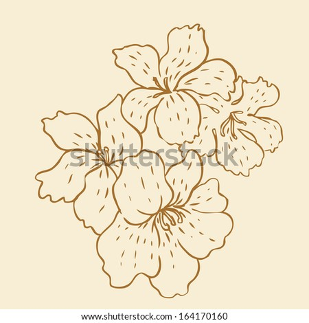 Vintage hand-drawing background with flowers. Vector illustration isolated on beige.   - stock vector