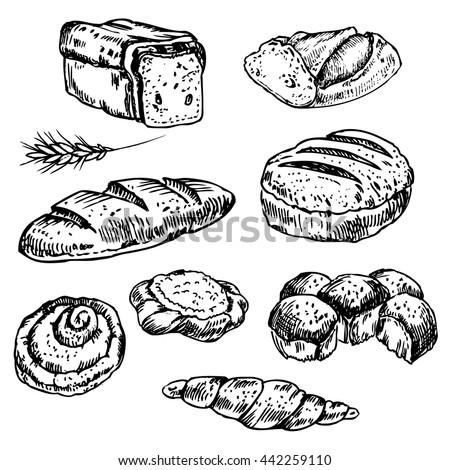 Vintage hand drawn sketch style bakery set. Set of fresh bread. Hand drawn illustration of bread  and bakery product. Bakery  hand drawn collection. Vector black and white engraving  illustration.