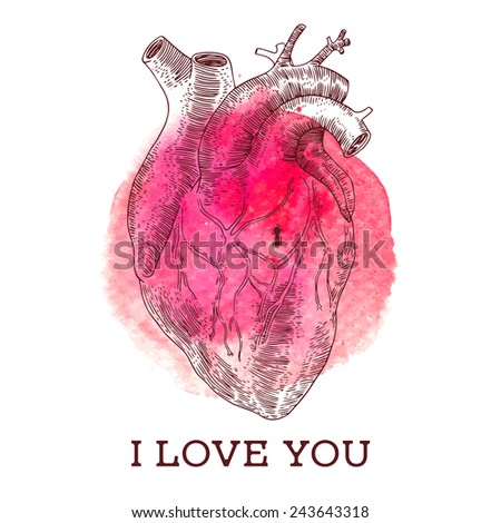 Vintage illustrations with Human heart for Valentine's Day with watercolor background. - stock vector