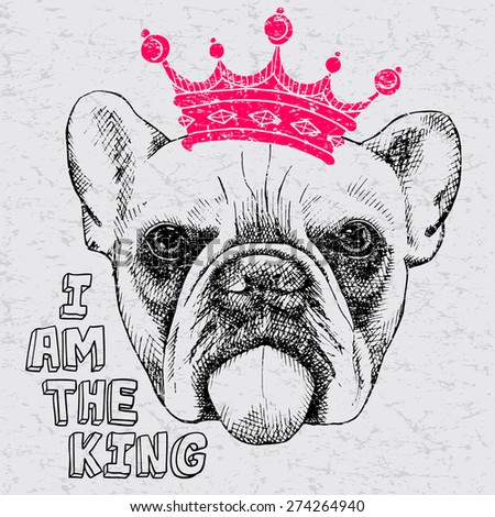 Vintage image of a bulldog wearing a crown. Vector illustration.