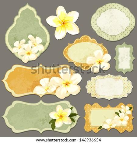Vintage paper labels set. Vector illustration with scrapbooking elements. Summer design with exotic flower pulmeria - stock vector