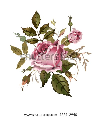 Vintage pink rose. Isolated on white. Vector Illustration. Can be used as greeting card, invitation card for wedding, birthday, scrapbooking, textile and for other design projects. - stock vector