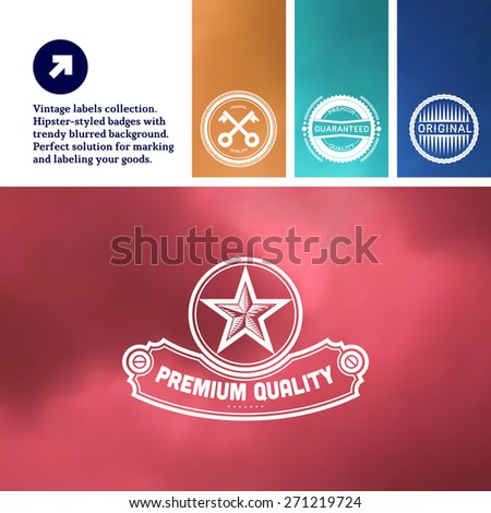 Vintage premium labels set tile structured on blurred background - stock vector