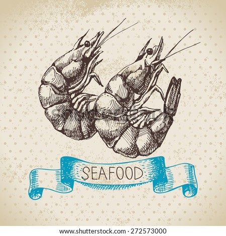 Vintage sea background. Hand drawn sketch seafood vector illustration of shrimps - stock vector