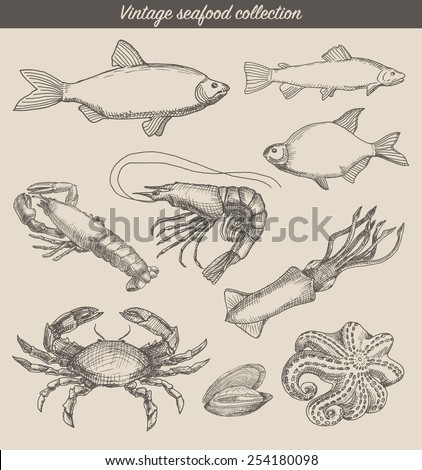 Vintage seafood set, hand drawn vector illustration, sketch - stock vector