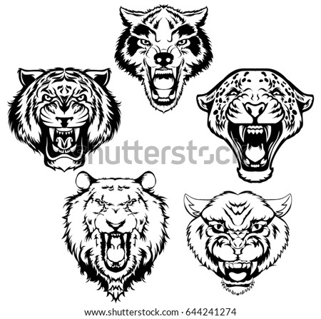 Vintage set of animal head. Tiger, lion, panther, wolf, leopard head vector illustration.
