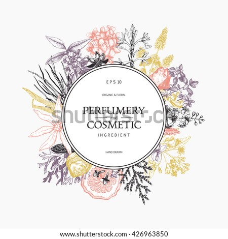 Vintage template. Ink hand drawn design with aromatic plants and  fruits in pastel colors.  Vector illustration with highly detailed perfumery and cosmetics ingredients