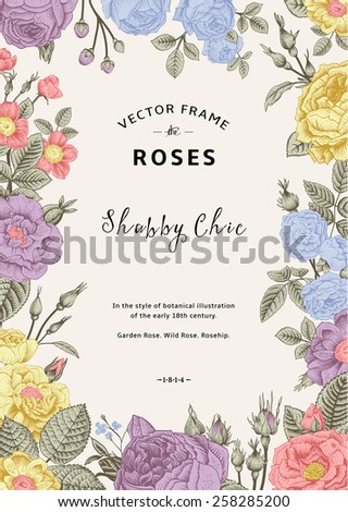 Vintage vector frame. Garden and wild roses. In the style of an old botanical illustration. Pastel color. - stock vector