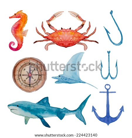 Vintage watercolor elements set in sea theme. Hand drawn anchor, crab, shark, sea horse, hook, compass in vector. - stock vector