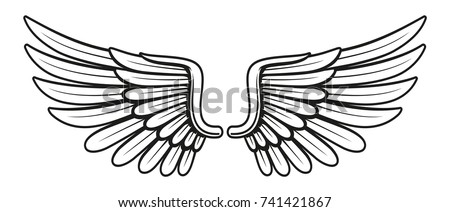 Vintage wings, isolated on white background
