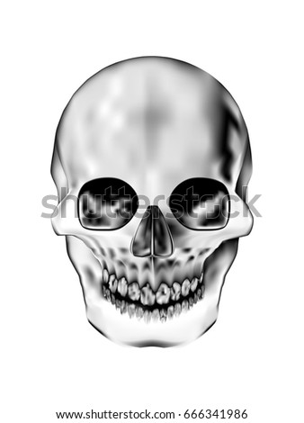 visual drawing for human skull on black and white background of illustrator the human anatomy