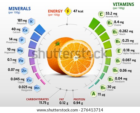 Vitamins and minerals of orange fruit. Infographics about nutrients in orange. Qualitative vector illustration about orange, vitamins, fruits, health food, nutrients, diet, etc - stock vector