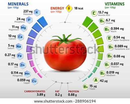 Vitamins and minerals of tomato. Infographics about nutrients in tomato. Qualitative vector illustration about tomato, vitamins, vegetables, health food, nutrients, diet, etc - stock vector