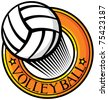 volleyball club emblem (label, design) - stock vector