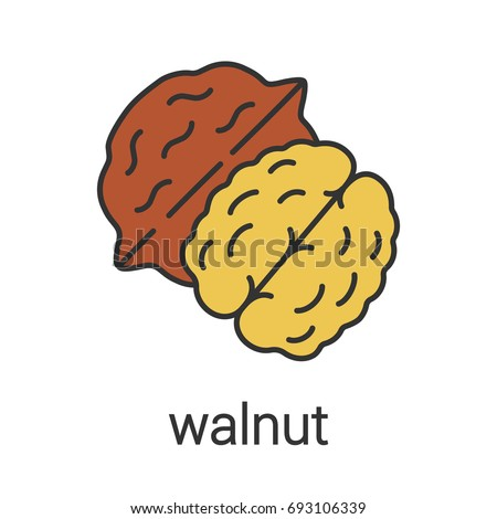 Walnut Color Icon Hazelnut Flavoring Seasoning Stock ...