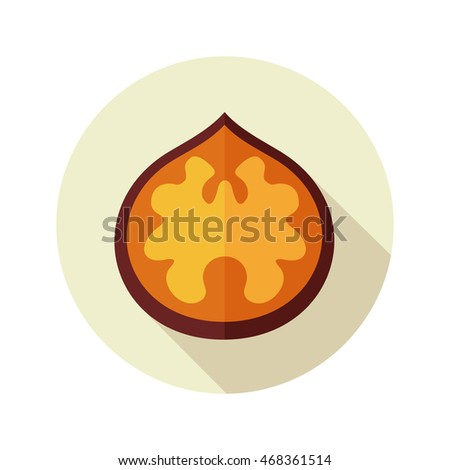 Nutshell Icon Stock Photos, Royalty-Free Images & Vectors ...