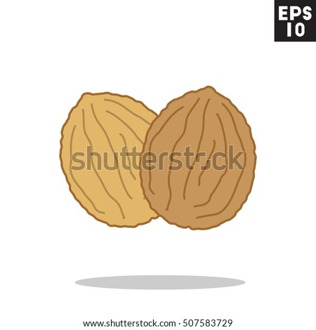 Walnut Icon Trendy Flat Style Isolated Stock Vector ...