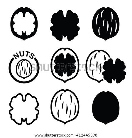 Walnut, nutshell vector icons set  - stock vector