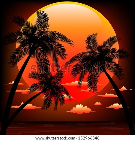 Warm Topical Sunset with Palm Trees