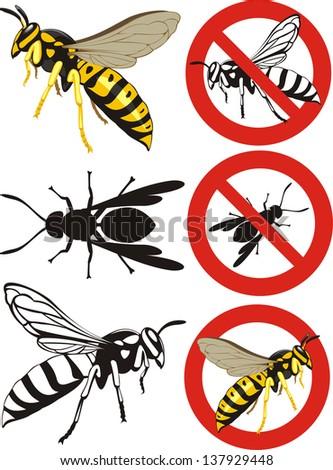 wasp - warning signs - stock vector