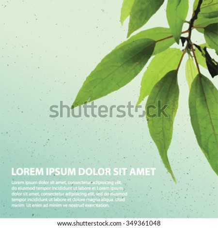 water color effect green leaves card background - stock vector